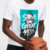 3Nike Dri-FIT LeBron Basketball T-Shirt BQ3625